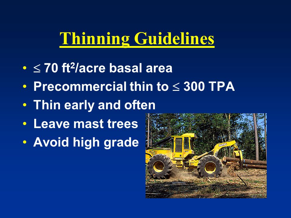 Thinning Guidelines  70 ft 2 /acre basal area Precommercial thin to  300 TPA Thin early and often Leave mast trees Avoid high grade