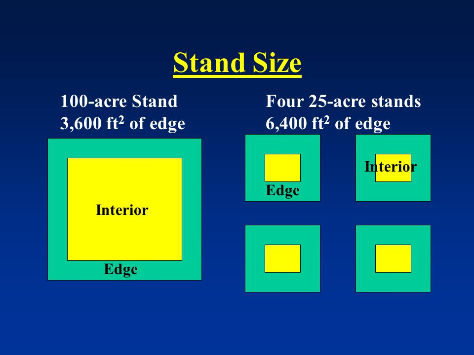 Stand Size 100-acre Stand 3,600 ft 2 of edge Edge Interior Four 25-acre stands 6,400 ft 2 of edge