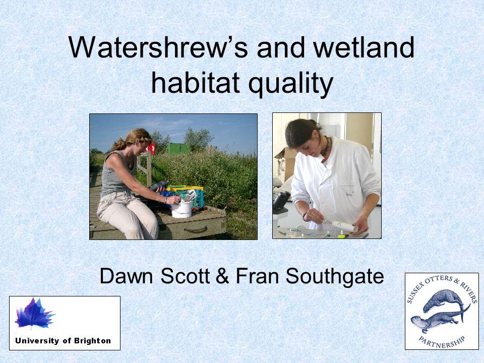 Watershrew's and wetland habitat quality Dawn Scott & Fran Southgate