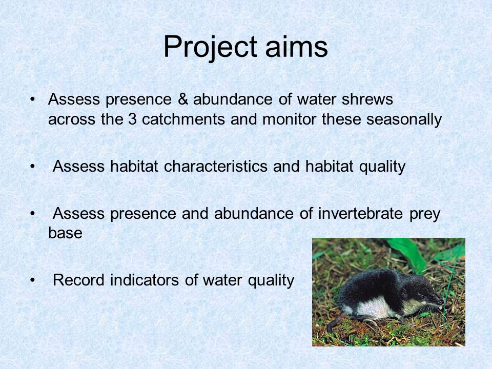 Project aims Assess presence & abundance of water shrews across the 3 catchments and monitor these seasonally Assess habitat characteristics and habitat quality Assess presence and abundance of invertebrate prey base Record indicators of water quality
