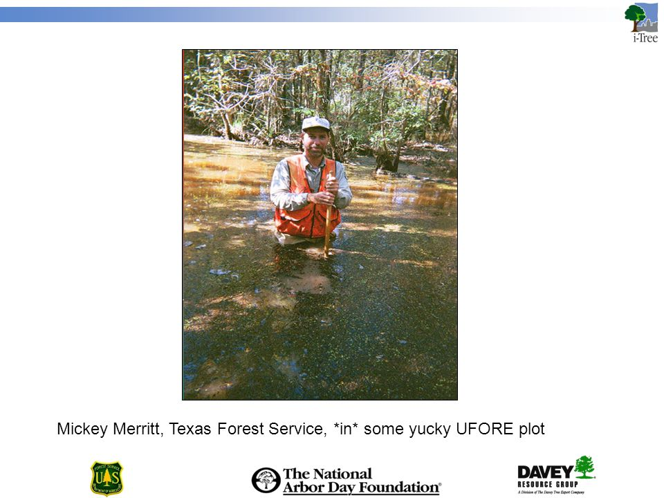 Mickey Merritt, Texas Forest Service, *in* some yucky UFORE plot