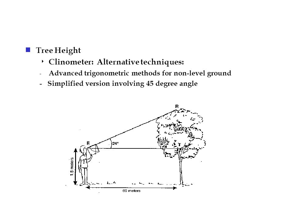  Tree Height  Clinometer: Alternative techniques: - Advanced trigonometric methods for non-level ground - Simplified version involving 45 degree angle