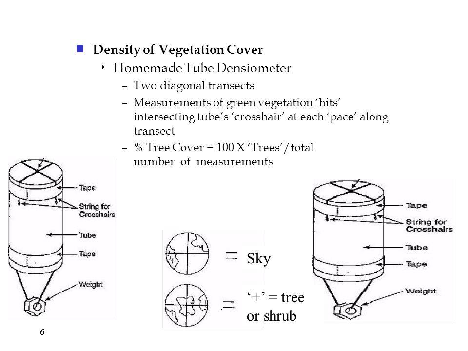 Biometry Measurements 30 m Biometry Measurement Area – Pacing Semi-Diagonals N NE SE SW NW