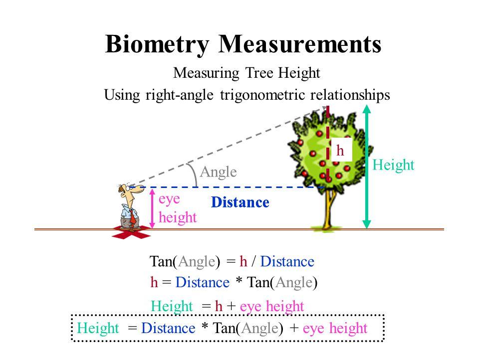  Tree Height  Clinometer: Alternative techniques: - Advanced trigonometric methods for non-level ground - Simplified version involving 45 degree angle