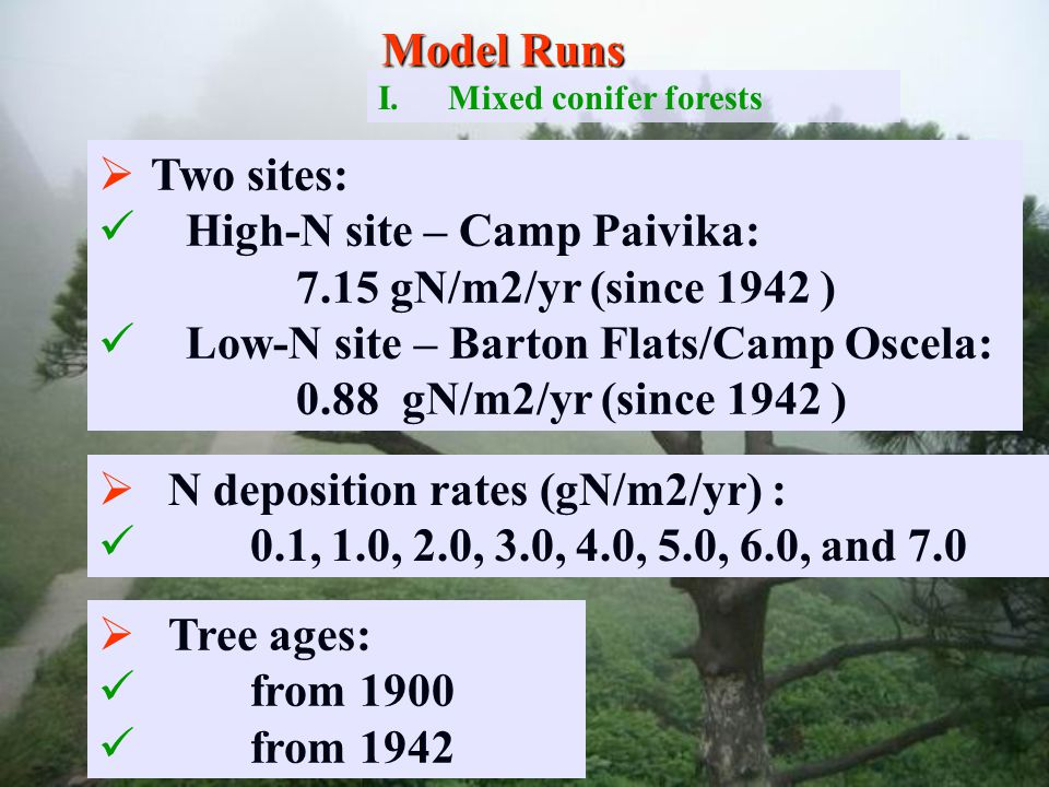   Two sites: High-N site – Camp Paivika: 7.15 gN/m2/yr (since 1942 ) Low-N site – Barton Flats/Camp Oscela: 0.88 gN/m2/yr (since 1942 )   N deposition rates (gN/m2/yr) : 0.1, 1.0, 2.0, 3.0, 4.0, 5.0, 6.0, and 7.0   Tree ages: from 1900 from 1942 Model Runs I.