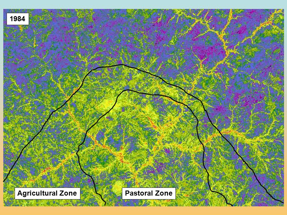 1984 Pastoral Zone Agricultural Zone