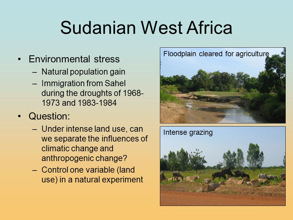 Nouhao Valley, Burkina Faso 100 km Burkina Faso Departments Burkina Faso –North = pastoralists –South = agriculturalists Nouhao Valley –Abandoned in mid- century due to Onchocerciasis (River blindness) –Resettled in 1984 after Onchocerciasis Control Program –Experimental division of Pastoralists and Agriculturalists Nouhao Valley Burkina Faso 10 km Ghana Burkina Faso Pastoral Zone Pastoral Zone Agricultural Zone Agricultural Zone