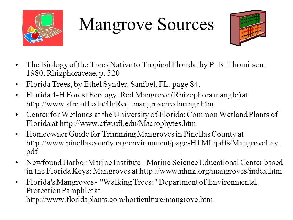 Mangrove Sources The Biology of the Trees Native to Tropical Florida, by P.