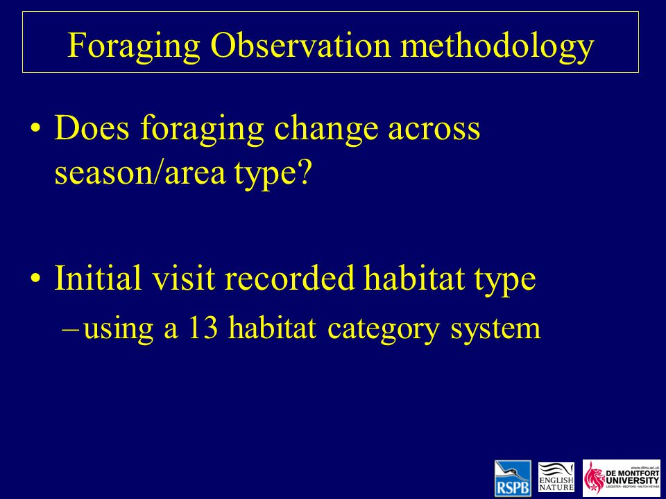 Foraging Observation methodology Does foraging change across season/area type.