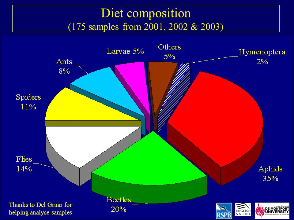 Diet composition (175 samples from 2001, 2002 & 2003) Thanks to Del Gruar for helping analyse samples