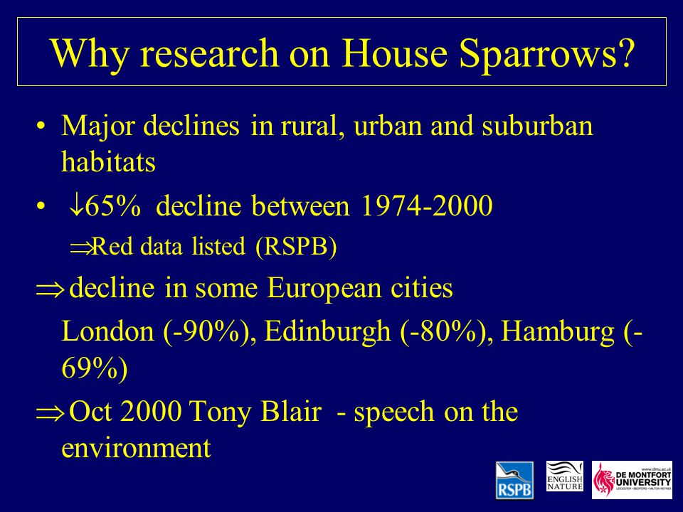 Why research on House Sparrows.