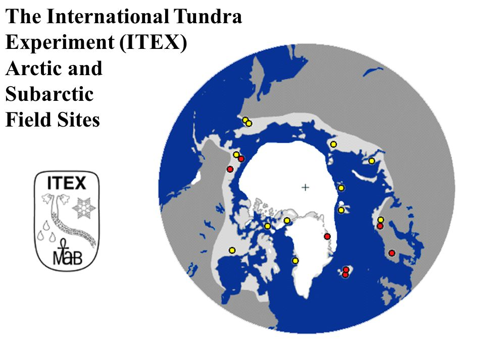 The International Tundra Experiment (ITEX) Arctic and Subarctic Field Sites