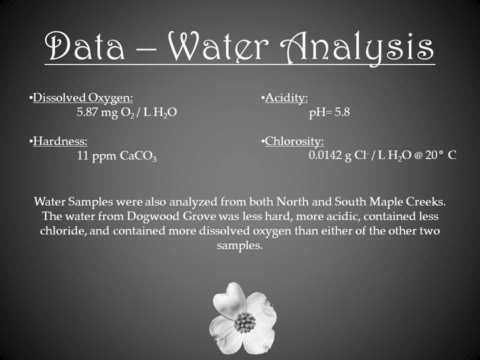 Data – Water Analysis Dissolved Oxygen: 5.87 mg O 2 / L H 2 O Hardness: 11 ppm CaCO 3 Acidity: pH= 5.8 Chlorosity: 0.0142 g Cl - / L H 2 O @ 20° C Water Samples were also analyzed from both North and South Maple Creeks.