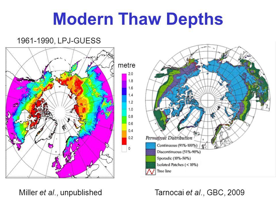 Modern Thaw Depths metre 1961-1990, LPJ-GUESS Tarnocai et al., GBC, 2009Miller et al., unpublished