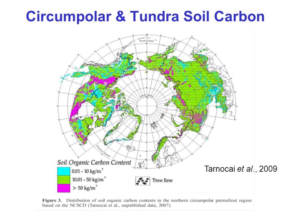 Circumpolar & Tundra Soil Carbon Tarnocai et al., 2009