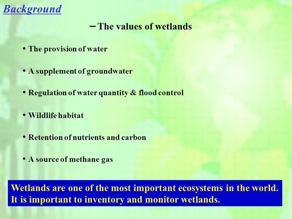 - The values of wetlands The provision of water A supplement of groundwater Regulation of water quantity & flood control Wildlife habitat Retention of nutrients and carbon Wetlands are one of the most important ecosystems in the world.