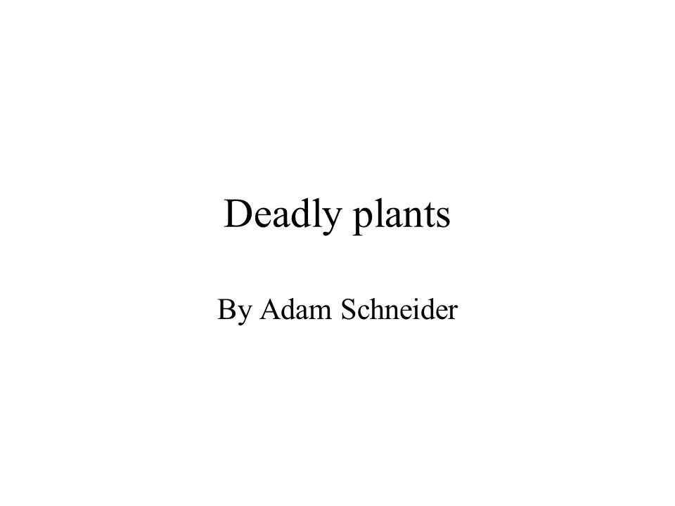 Deadly plants By Adam Schneider
