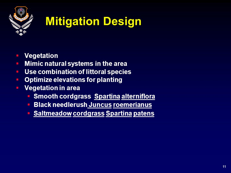 11 Mitigation Design  Vegetation  Mimic natural systems in the area  Use combination of littoral species  Optimize elevations for planting  Veget