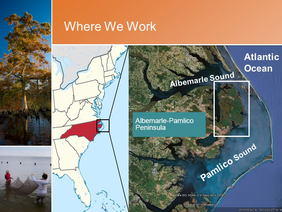 Where We Work Slide Text Albemarle-Pamlico Peninsula Albemarle Sound Pamlico Sound Atlantic Ocean