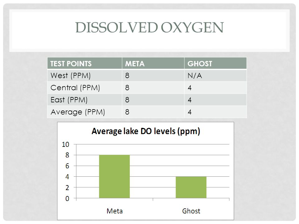 DISSOLVED OXYGEN TEST POINTSMETAGHOST West (PPM)8N/A Central (PPM)84 East (PPM)84 Average (PPM)84