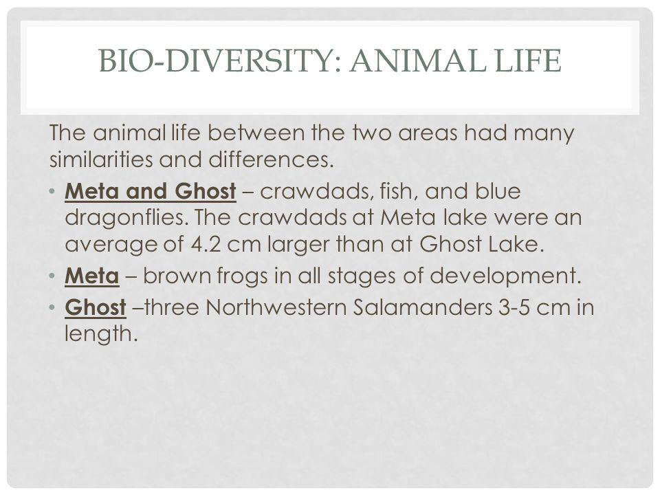 BIO-DIVERSITY: ANIMAL LIFE The animal life between the two areas had many similarities and differences.