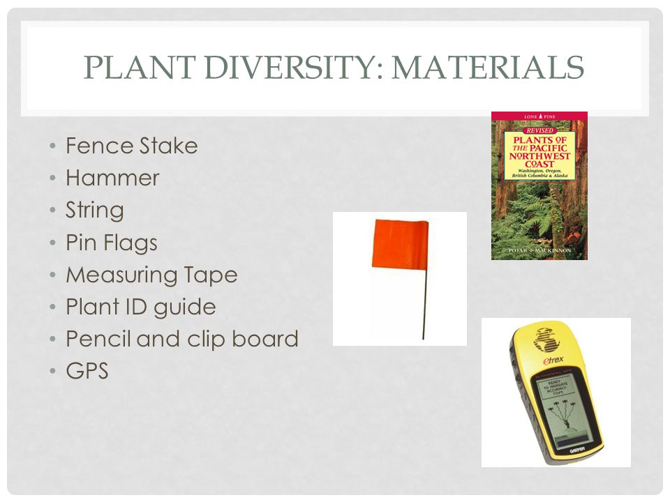 PLANT DIVERSITY: MATERIALS Fence Stake Hammer String Pin Flags Measuring Tape Plant ID guide Pencil and clip board GPS
