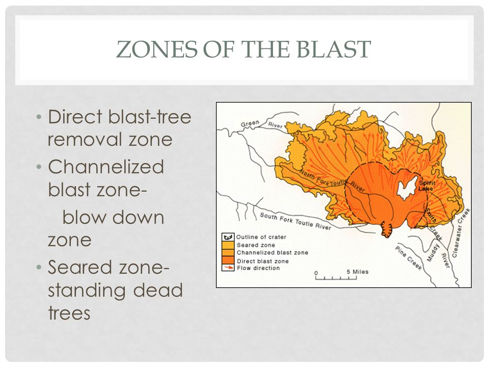 ZONES OF THE BLAST Direct blast-tree removal zone Channelized blast zone- blow down zone Seared zone- standing dead trees