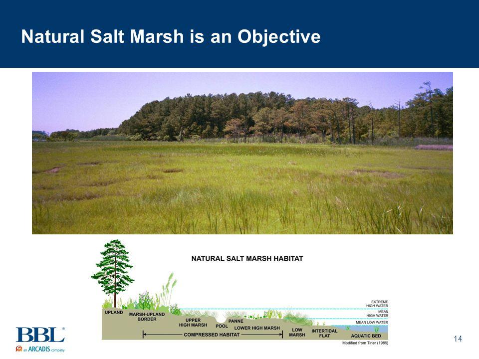 14 Natural Salt Marsh is an Objective