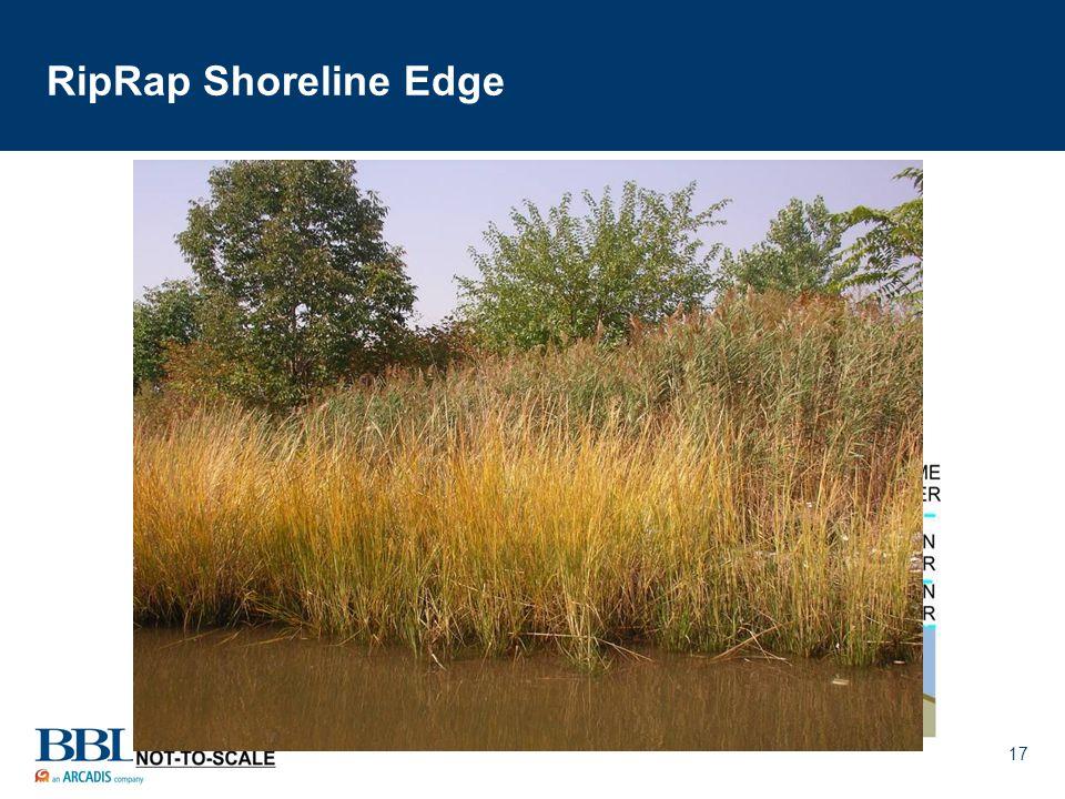 17 RipRap Shoreline Edge