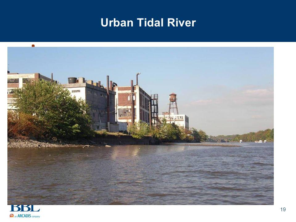 19 Urban Tidal River