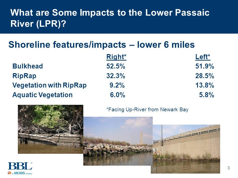 3 What are Some Impacts to the Lower Passaic River (LPR).