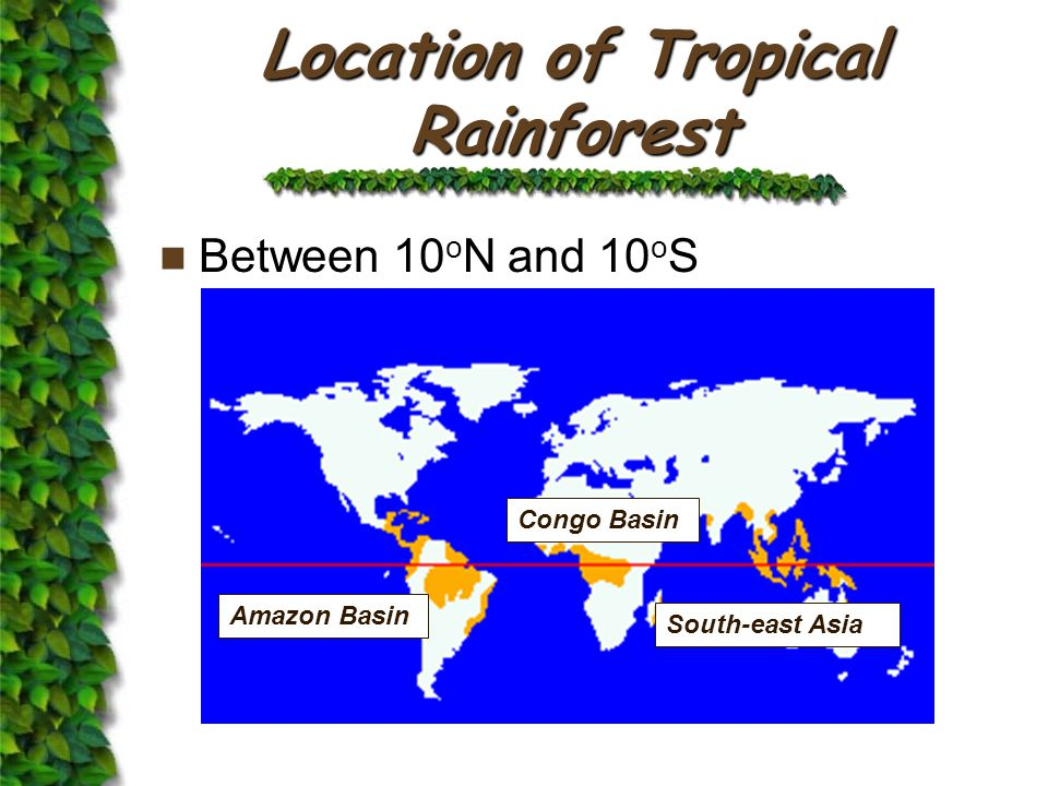 Location of Tropical Rainforest Between 10 o N and 10 o S Amazon Basin Congo Basin South-east Asia
