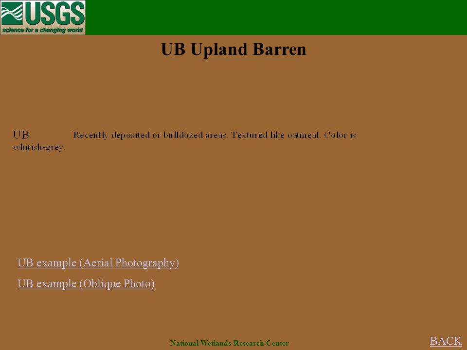 UB example (Aerial Photography) UB example (Oblique Photo) UB Upland Barren BACK National Wetlands Research Center