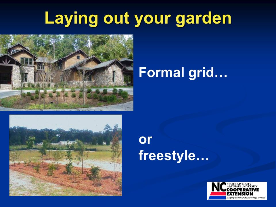 Laying out your garden Formal grid… or freestyle…