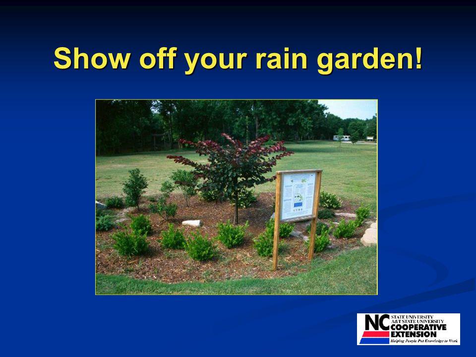 Show off your rain garden!