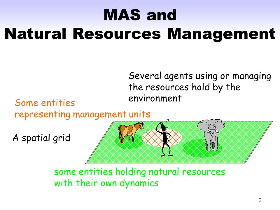 2 MAS and Natural Resources Management A spatial grid some entities holding natural resources with their own dynamics Some entities representing management units Several agents using or managing the resources hold by the environment
