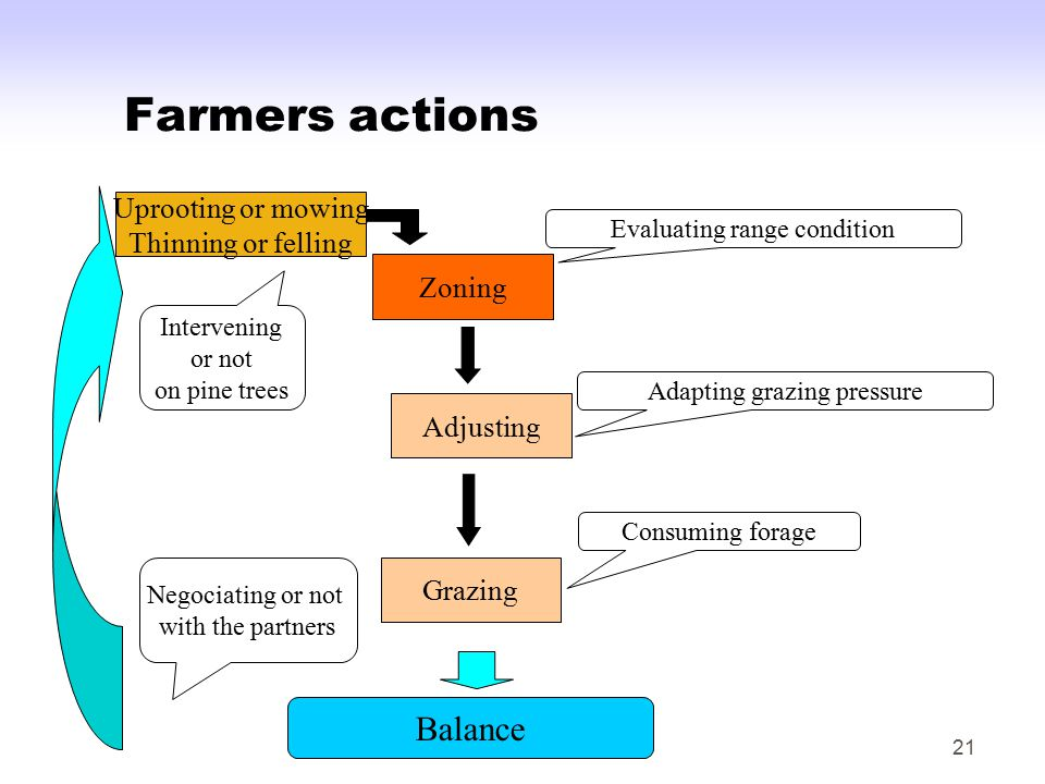 21 Farmers actions Balance Zoning Evaluating range condition Grazing Consuming forage Adjusting Adapting grazing pressure Intervening or not on pine trees Uprooting or mowing Thinning or felling Negociating or not with the partners
