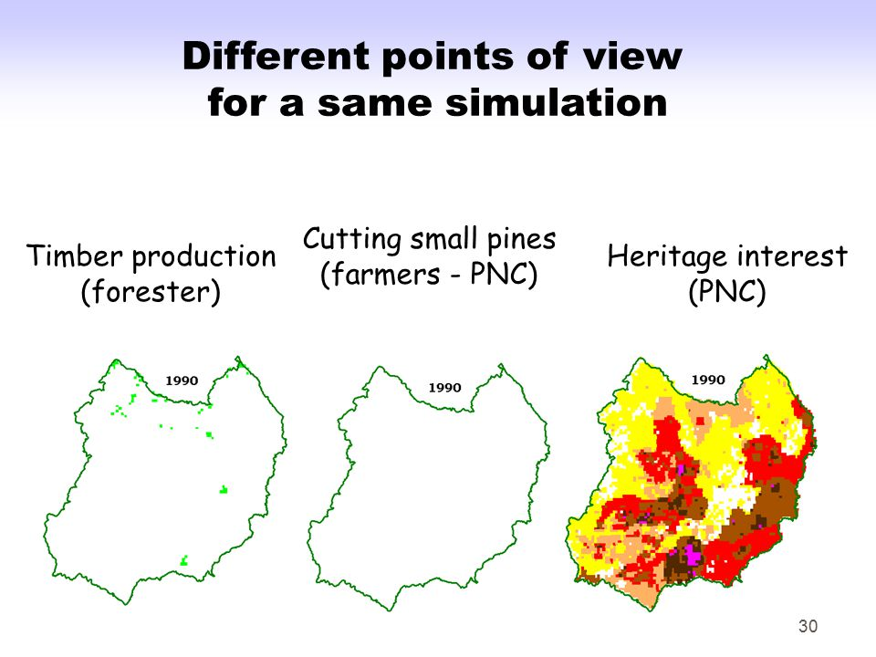 30 Different points of view for a same simulation Timber production (forester) Cutting small pines (farmers - PNC) Heritage interest (PNC)