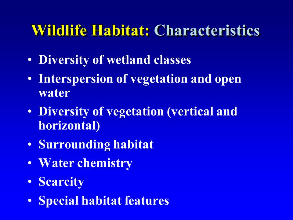 Wildlife Habitat: Characteristics Diversity of wetland classes Interspersion of vegetation and open water Diversity of vegetation (vertical and horizo