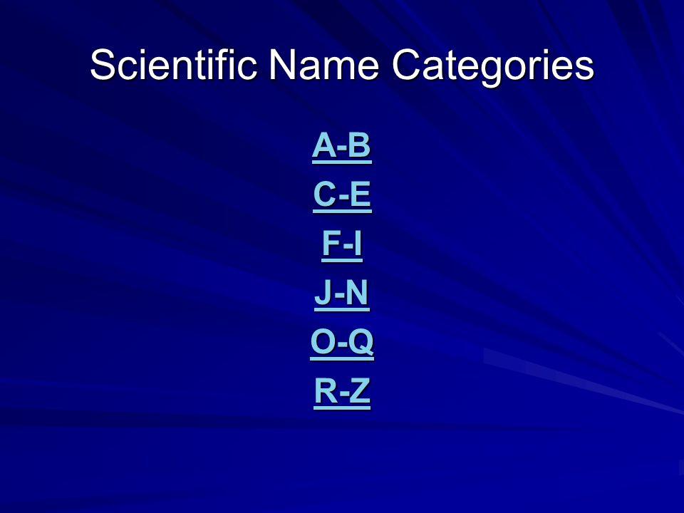Scientific Name Categories A-B C-E F-I J-N O-Q R-Z