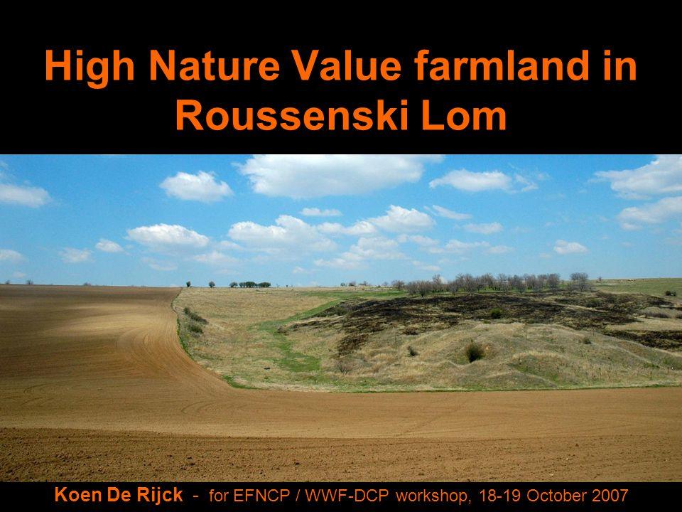 High Nature Value farmland in Roussenski Lom Koen De Rijck - for EFNCP / WWF-DCP workshop, 18-19 October 2007