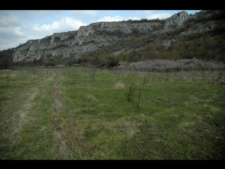 HNVF Analysis Dry semi-natural grasslands on slopes