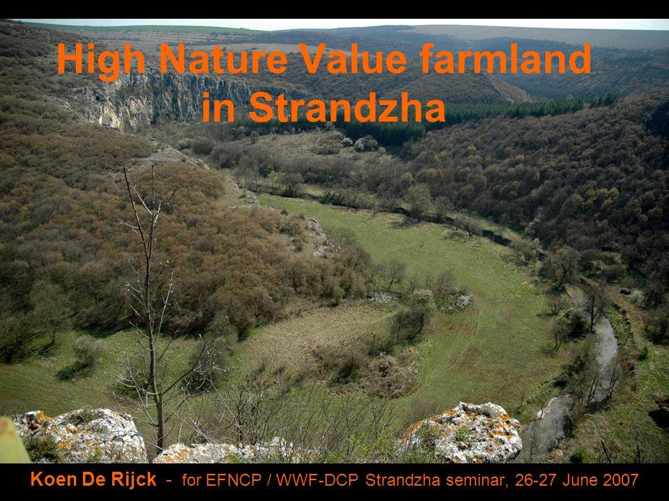High Nature Value farmland in Strandzha Koen De Rijck - for EFNCP / WWF-DCP Strandzha seminar, 26-27 June 2007