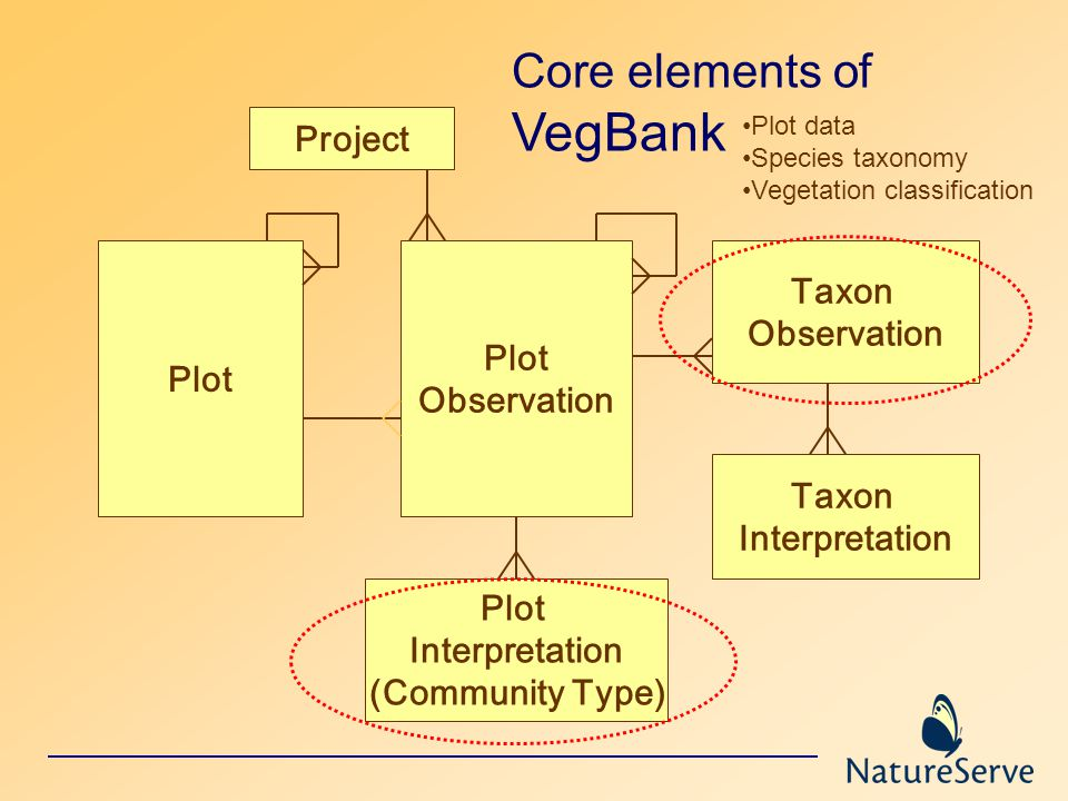 Project Plot Observation Taxon Observation Taxon Interpretation Plot Interpretation (Community Type) Core elements of VegBank Plot data Species taxonomy Vegetation classification