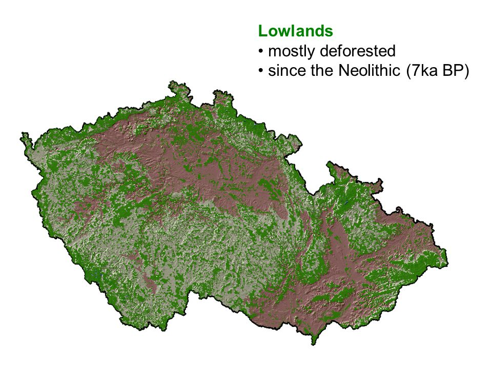 Lowlands mostly deforested since the Neolithic (7ka BP)