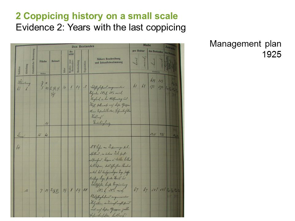 Management plan 1925 2 Coppicing history on a small scale Evidence 2: Years with the last coppicing
