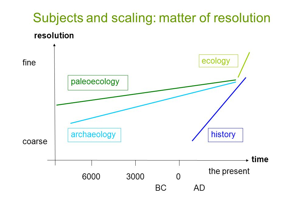 030006000 AD the present history time ecology paleoecology archaeology BC fine coarse resolution Subjects and scaling: matter of resolution