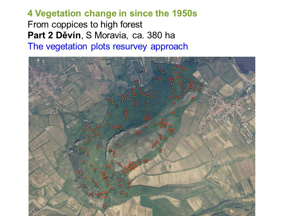4 Vegetation change in since the 1950s From coppices to high forest Part 2 Děvín, S Moravia, ca.
