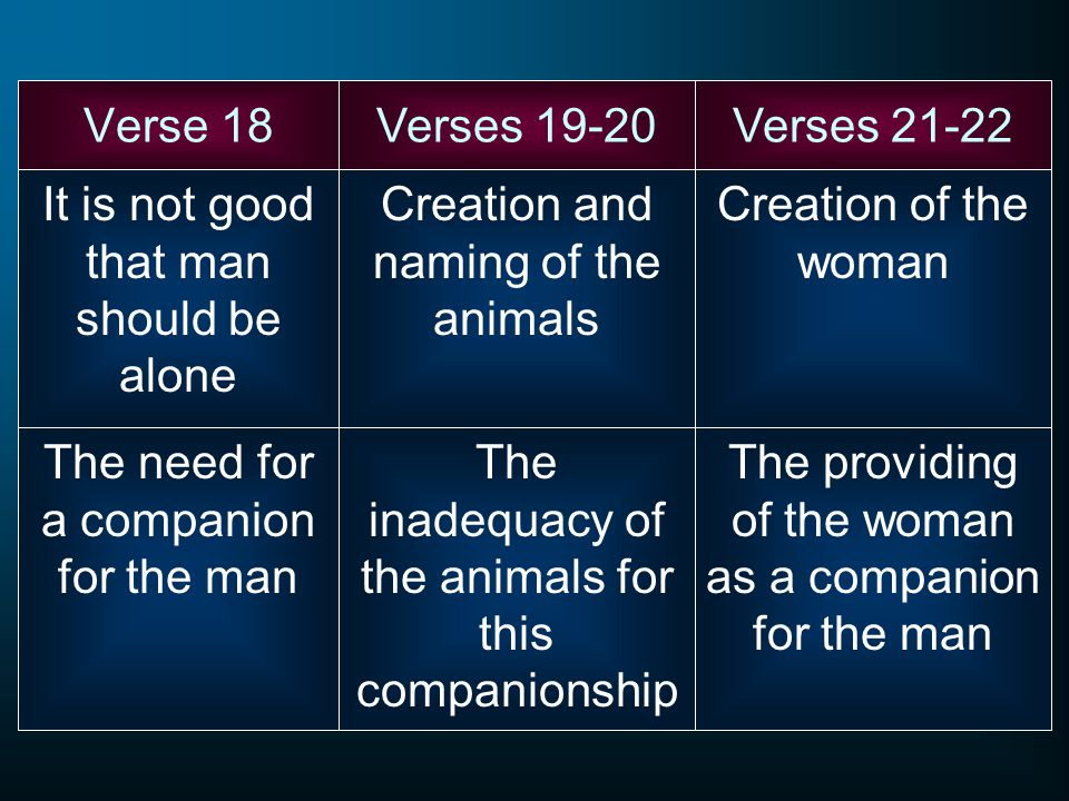 Verse 18 It is not good that man should be alone Verses 19-20Verses 21-22 The need for a companion for the man Creation and naming of the animals The