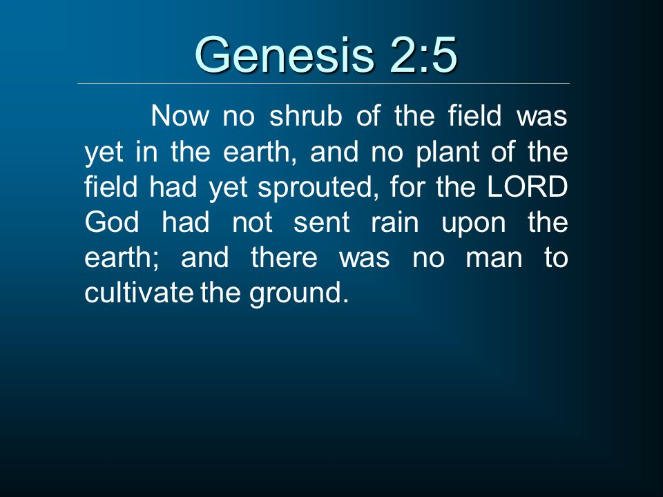 Genesis 2:5 Now no shrub of the field was yet in the earth, and no plant of the field had yet sprouted, for the LORD God had not sent rain upon the earth; and there was no man to cultivate the ground.